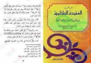 يقول الإمام الحافظ الكبير أحمد بن سلامة أبو جعفر الطحاوي السلفي (ومن وصف الله بمعنى من معاني البشر فقد كفر)